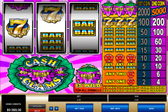 cash clams microgaming slot machine