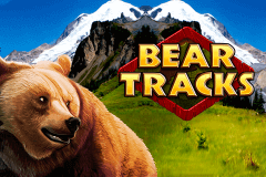 logo bear tracks novomatic slot online