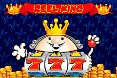 logo reel king novomatic slot online