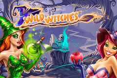 logo wild witches netent slot online