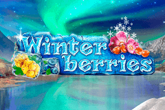 logo winterberries yggdrasil slot online
