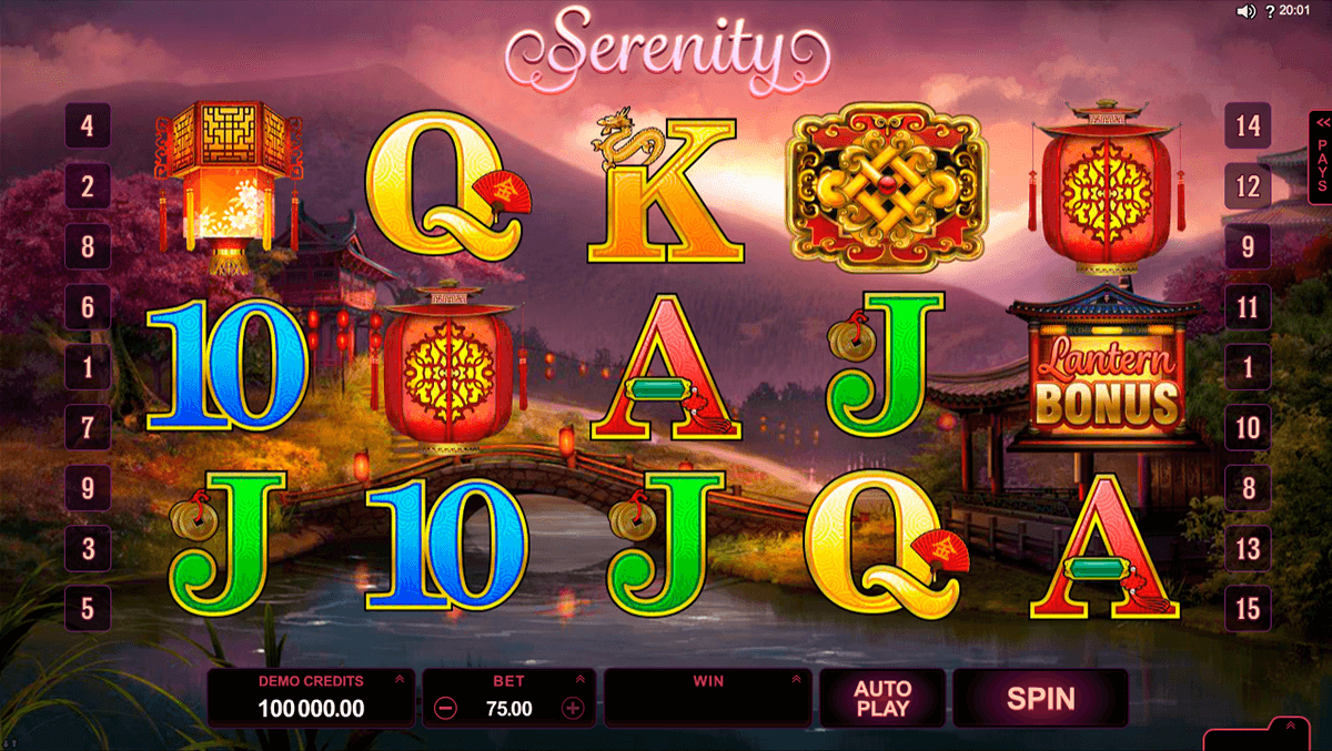 lucky twins microgaming slot machine