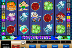 moonshine microgaming slot machine