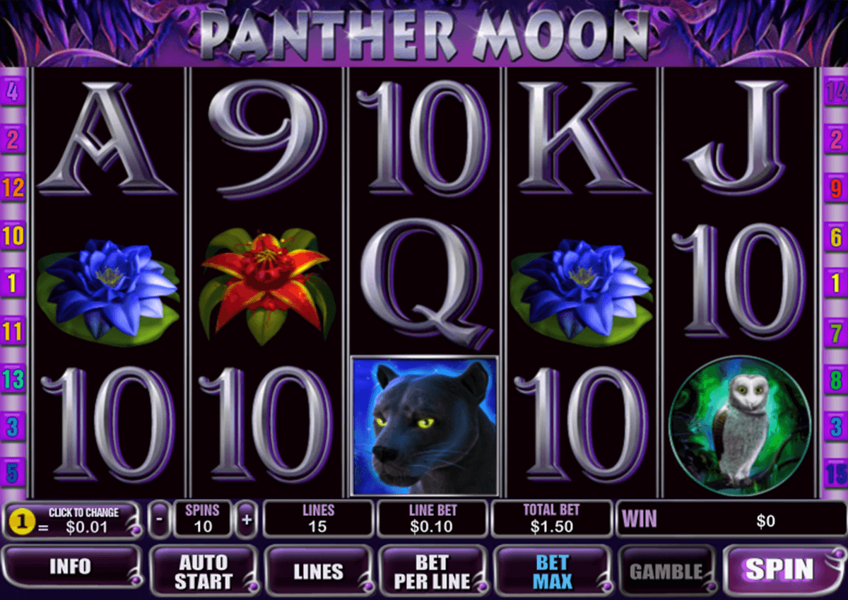 panther moon playtech slot machine