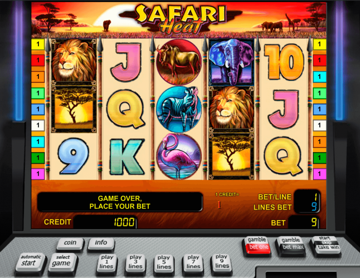 safari heat novomatic slot machine