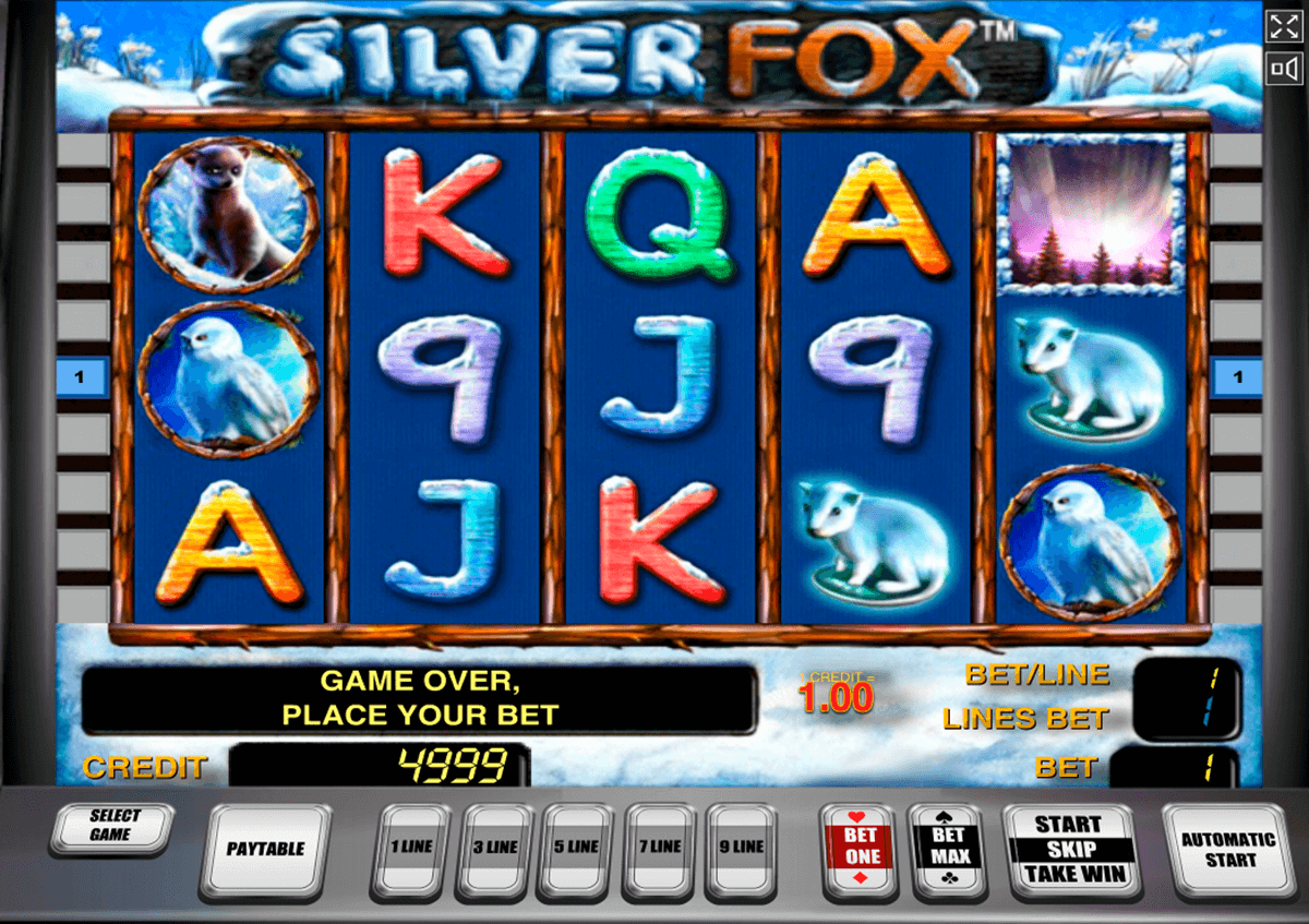 silver fox novomatic slot machine