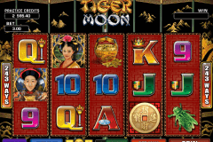 tiger moon microgaming slot machine